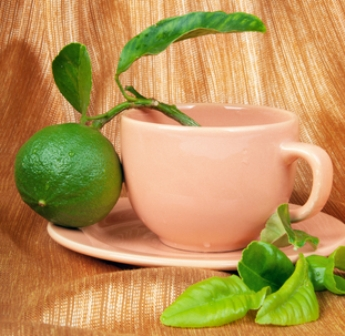 bergamot fruit and tea cup  |  © Irina Magrelo | Dreamstime.com